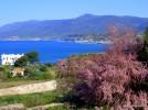 Sardinien April 2008-608