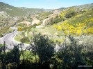 Sardinien April 2008-259