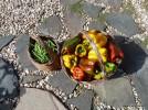 Hirtenessen im Agriturismo Nautilus