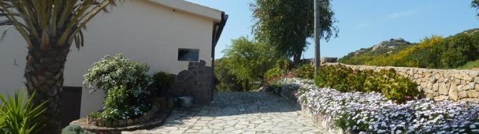 Sardinien, Gallura, Villa Maddalena, Garten