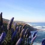Küste bei Porto Alabe, Westküste Sardinien Foto S.Hering
