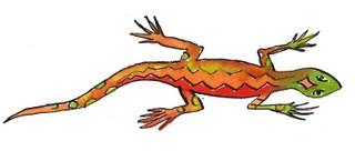 Eidechse Sardinien