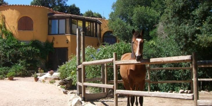 Rena Majore, Landhaus in der Gallura mit Pool   O-Solemio