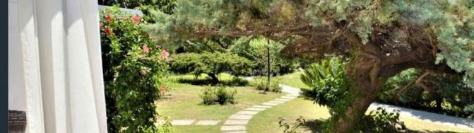 Blick in den Garten, Ferienhaus Camboni, Costa Rei